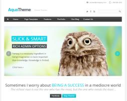 Tema Site Drupal para Empresas