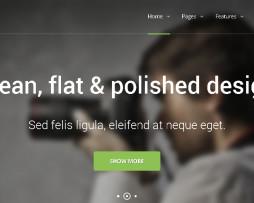 Tema site HTML para corporativo e negócios clean