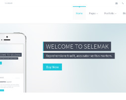 Tema site HTML para empresas e negócios, clean