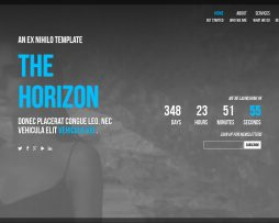 THE HORIZON1
