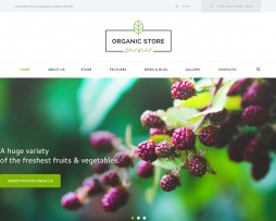 organicstore1